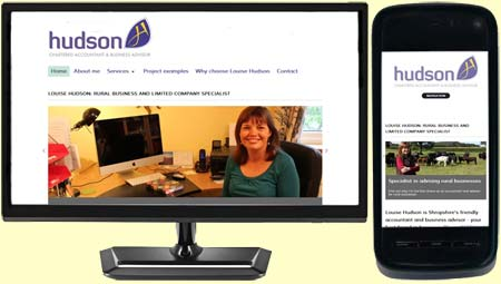 Louise Hudson's responsive design website designed by Moghill Web Services